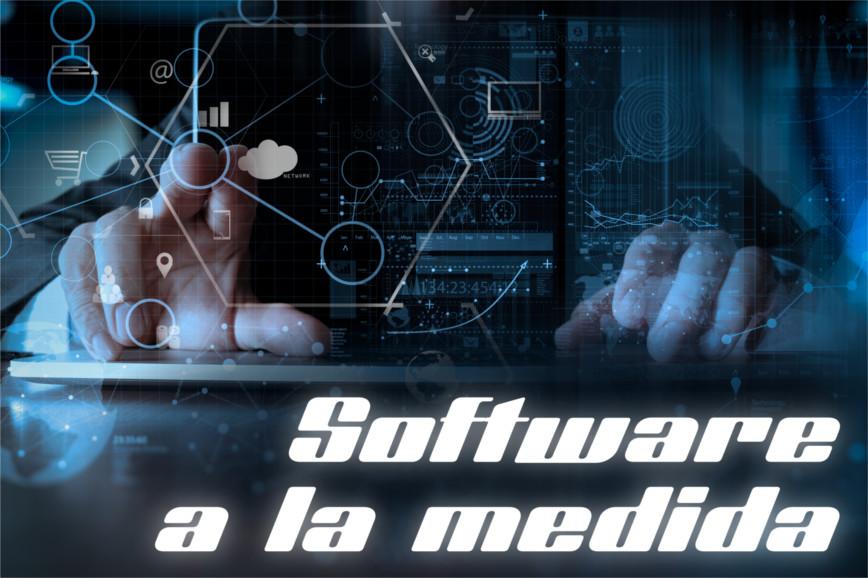 Tecvania | Desarrollo a la medida contra comprar software de caja